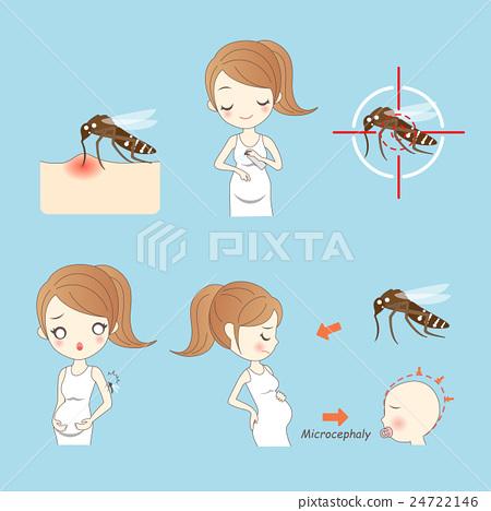 zika virus and pregnant women 24722146