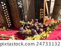 Old Accordion and Red Grape - Italy 24733132