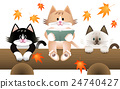 猫 猫咪 小猫 24740427