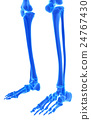 3D illustration of Feet Skeleton, medical concept. 24767430