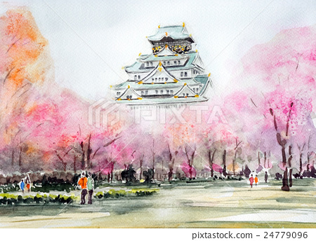 Osaka Castle Spring Sketch Castle and Sakura Osaka Cherry Blossoms 24779096