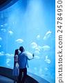 人 水族館 約會 24784950