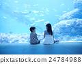 水族馆的姐妹姐妹出去了 24784988