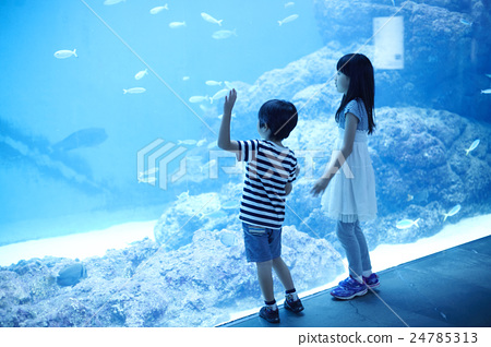 Aquarium Children 24785313