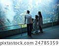 水族館家庭 24785359