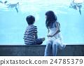水族館的姐妹姐妹出去了 24785379