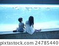 水族館的姐妹姐妹出去了 24785440