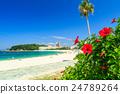 바다, 여름, 해변 24789264