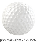 球 高爾夫球 曲棍球 24794597