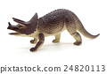 Triceratops dinosaurs toy on white background 24820113