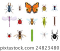 bug insect vector 24823480