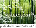Reflexology Healing Relaxation Therapist Wellness Concept 24829473