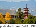 嚴島神社 世界文化遺產 千疊閣大廳 24848390