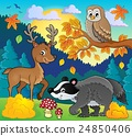 Forest wildlife theme image 3 24850406