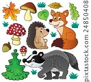Forest wildlife theme set 1 24850408