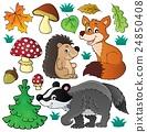 Forest wildlife theme set 1 24850408