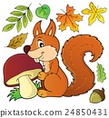 Squirrel with mushroom theme image 1 24850431