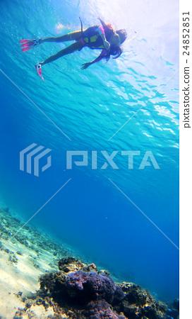 Underwater photography at Tokaijiki Island, Okinawa Elementary school student observing tropical fish 24852851