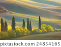Autumn Tuscany landscape - hills, trees and fields 24854165