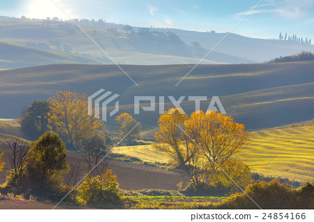 Sunny Autumn agriculture landscape, Tuscany 24854166