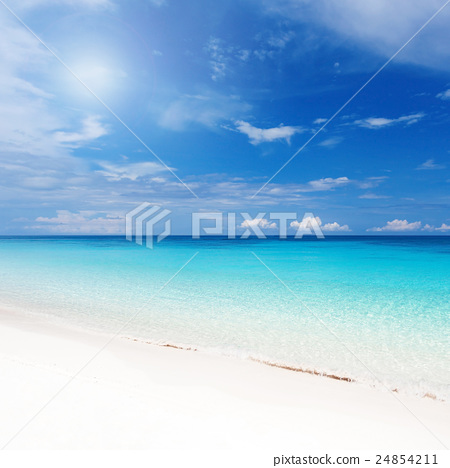 Tropical landscape with turquoise sea  24854211
