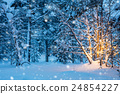 Christmas tree with garland lights, winter forest 24854227