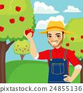 Farmer Picking Red Apple 24855136