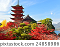 five-storied pagoda, miyajima, maple 24858986