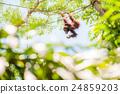 动物 猿人 猭 24859203