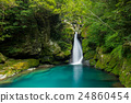 waterfall, basin under waterfall, fresh verdure 24860454