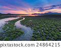 Small water way over green grass cracked land  24864215