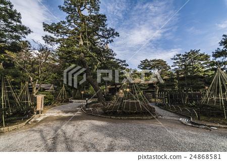 金澤兼六園 24868581