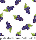 Currants pattern on white background 24869419