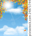 Autumn trees branches on sky background 24873744