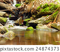 Small creek in forest 24874373