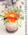 bouquet of blooming orange gerbera 24888423