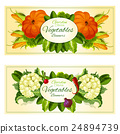 Vegetables and salad greens banners set 24894739