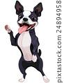 terrier, dog, puppy 24894958