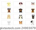 dog, dogs, frame 24903079