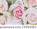 Soft color Roses Background 24904981