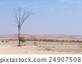 The Namib desert, roadtrip in Namibia, Africa. 24907508