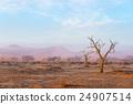 The Namib desert, roadtrip in Namibia, Africa. 24907514