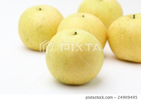 Twentieth century pear 24909495