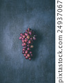 red grapes 24937067