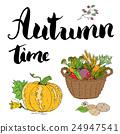 Autumn season set. Hand drawn doodles  24947541