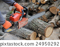 Chainsaw and tree 24950292