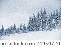 Winter landscape 24950720