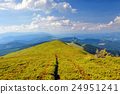 Sunny day in mountain landscape 24951241
