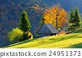Autumn landscape 24951373