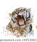 Tiger Portrait Watercolor 24953063